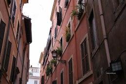 Rome (37)