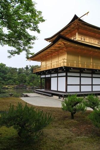 Japon (101)
