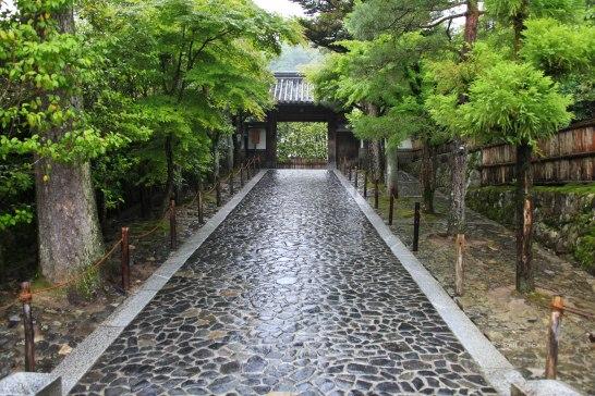 Japon (107)