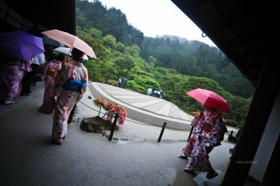 Japon (110)
