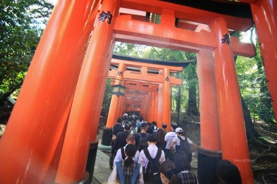 Japon (127)