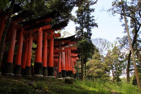 Japon (134)