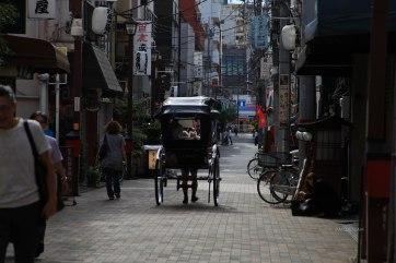 Japon (73)