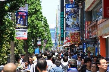 Japon (8)