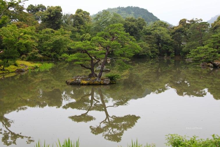 Japon (95)